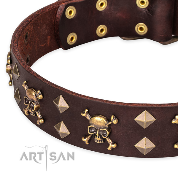 Everyday walking decorated dog collar of top notch full grain leather