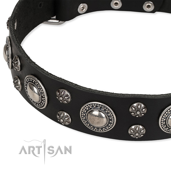 Comfortable wearing adorned dog collar of durable full grain genuine leather