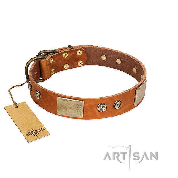 Easy adjustable natural genuine leather dog collar for stylish walking your dog