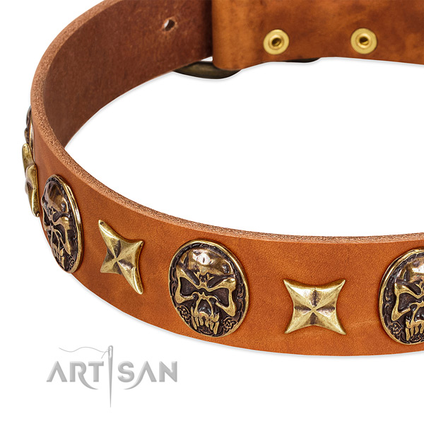 Corrosion proof traditional buckle on full grain genuine leather dog collar for your doggie