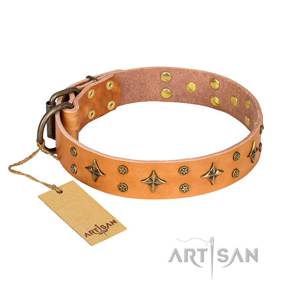 Handy use dog collar of top notch genuine leather with adornments