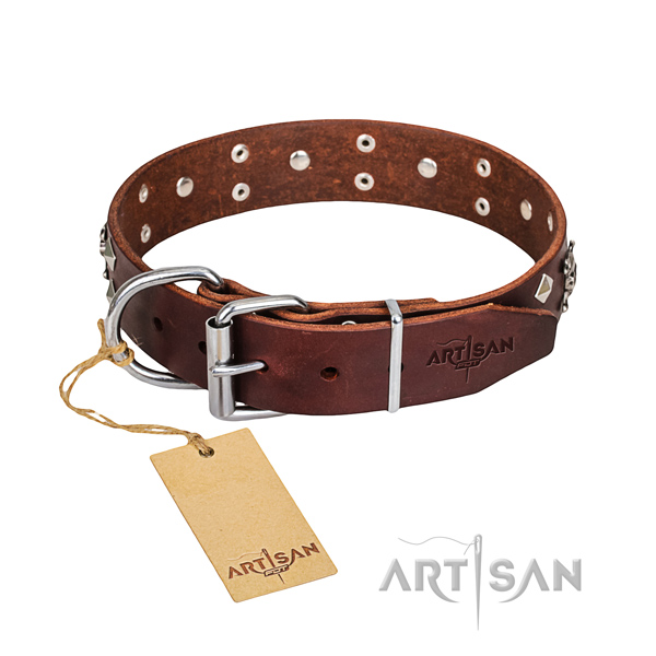Daily use dog collar of top notch full grain genuine leather with adornments