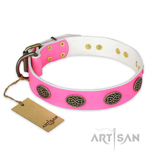 Exceptional full grain genuine leather dog collar for stylish walking
