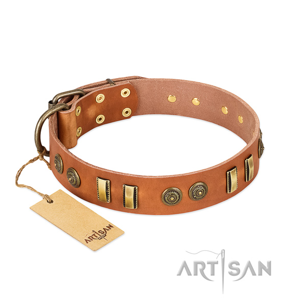 Reliable embellishments on genuine leather dog collar for your four-legged friend