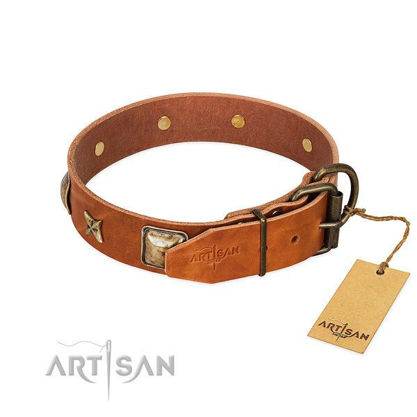 Leather dog collar with rust resistant D-ring and adornments