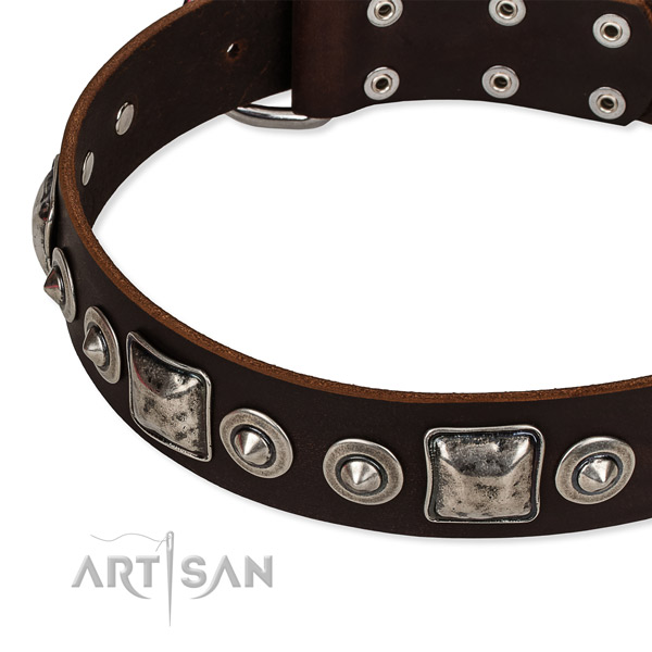 Full grain natural leather dog collar made of reliable material with studs