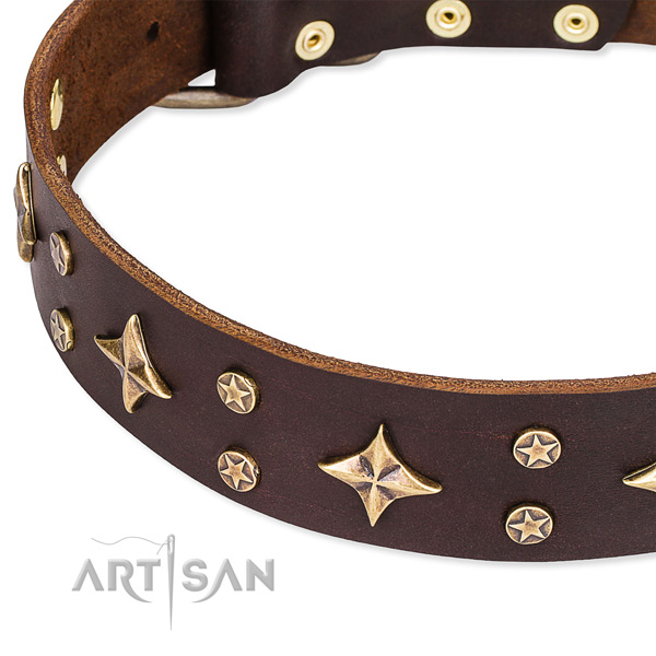 Everyday use embellished dog collar of fine quality natural leather