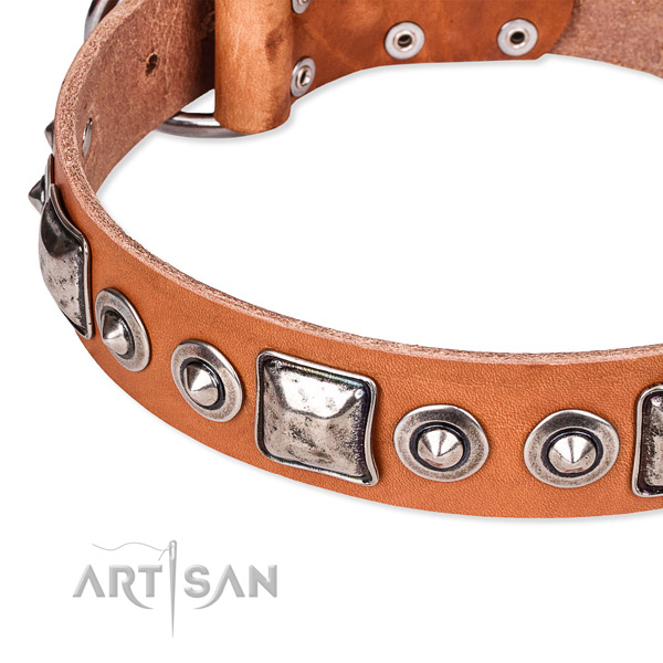 Reliable full grain genuine leather dog collar handcrafted for your handsome canine