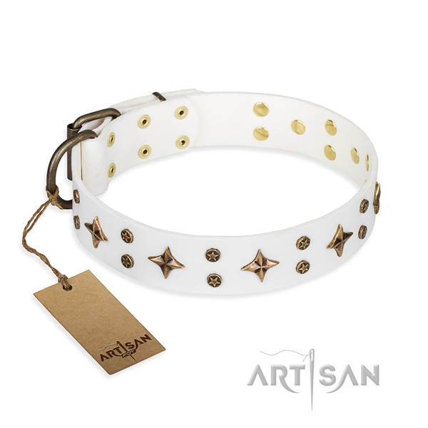Everyday use dog collar of quality full grain genuine leather with adornments