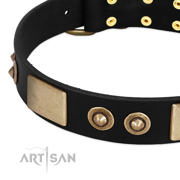 Rust resistant D-ring on leather dog collar for your canine