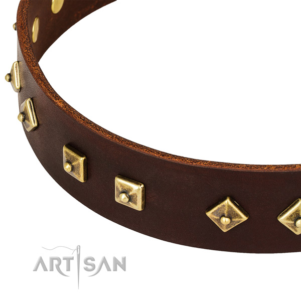 Unusual full grain leather collar for your beautiful dog