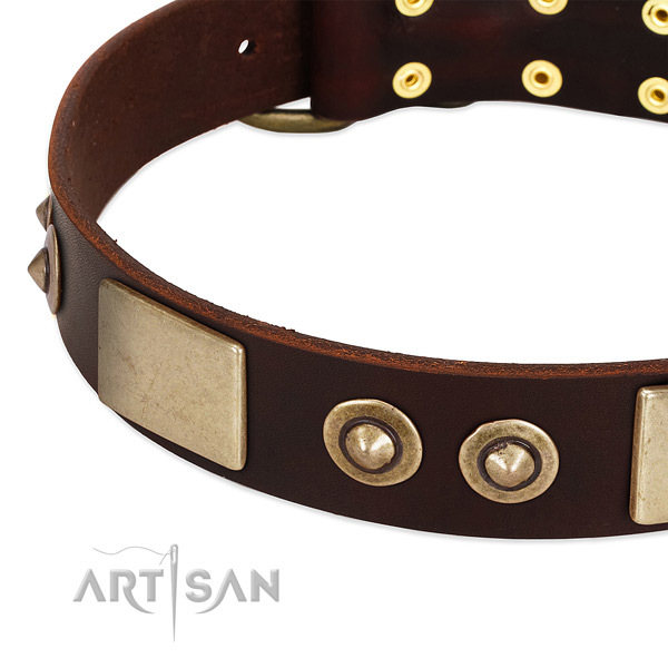 Corrosion proof buckle on full grain leather dog collar for your doggie