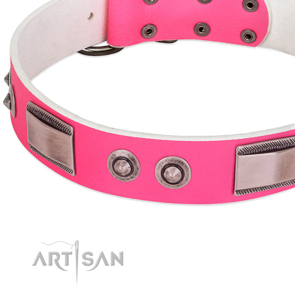 Handmade genuine leather collar with embellishments for your dog