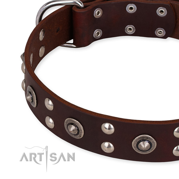 Genuine leather collar with rust-proof buckle for your beautiful pet