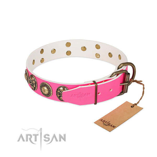 Corrosion resistant studs on basic training dog collar