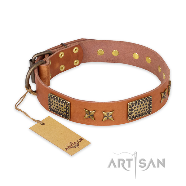 Designer full grain genuine leather dog collar with rust-proof traditional buckle