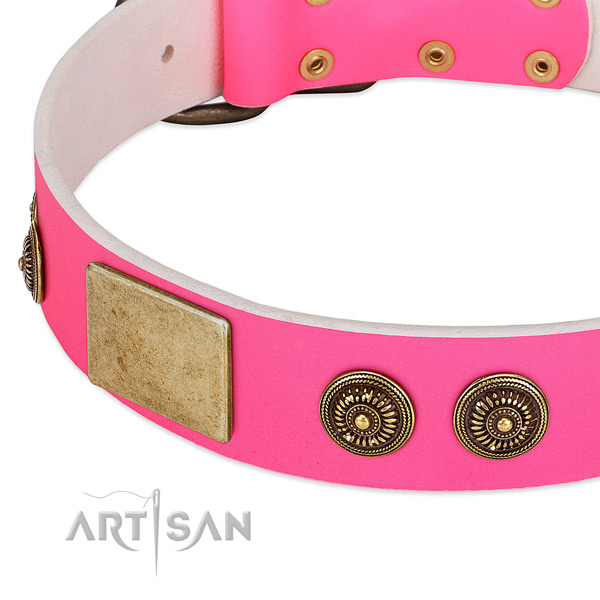 Top notch dog collar handmade for your attractive canine