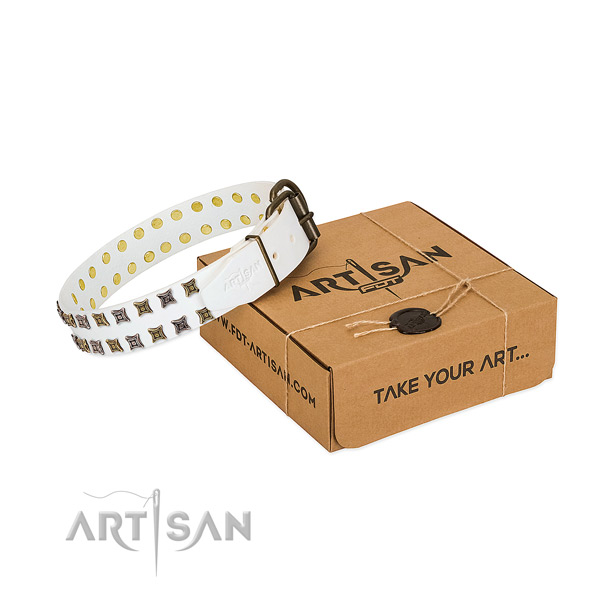 Full grain natural leather collar with impressive studs for your pet