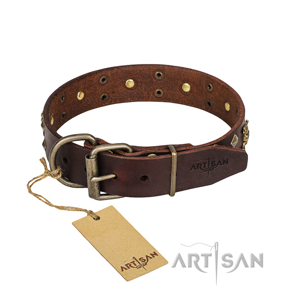Daily walking dog collar of durable full grain natural leather with studs