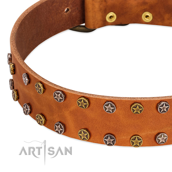 Comfy wearing full grain genuine leather dog collar with exquisite adornments