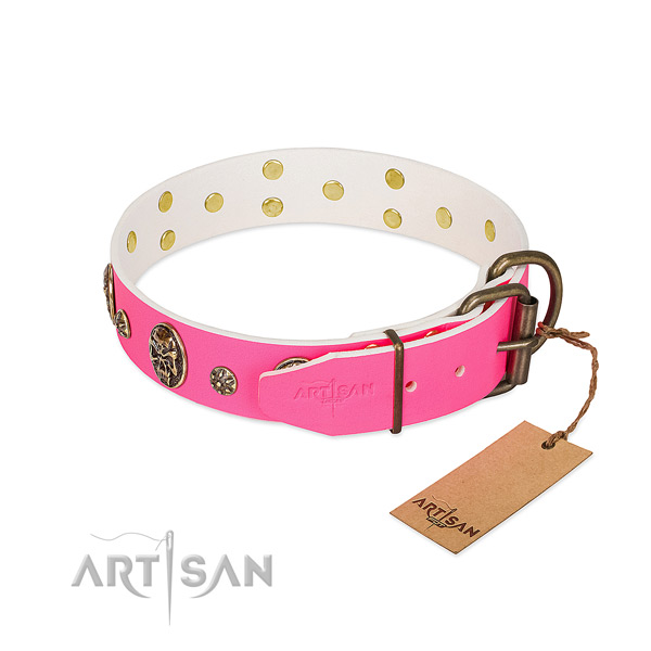 Corrosion resistant buckle on full grain leather collar for basic training your pet