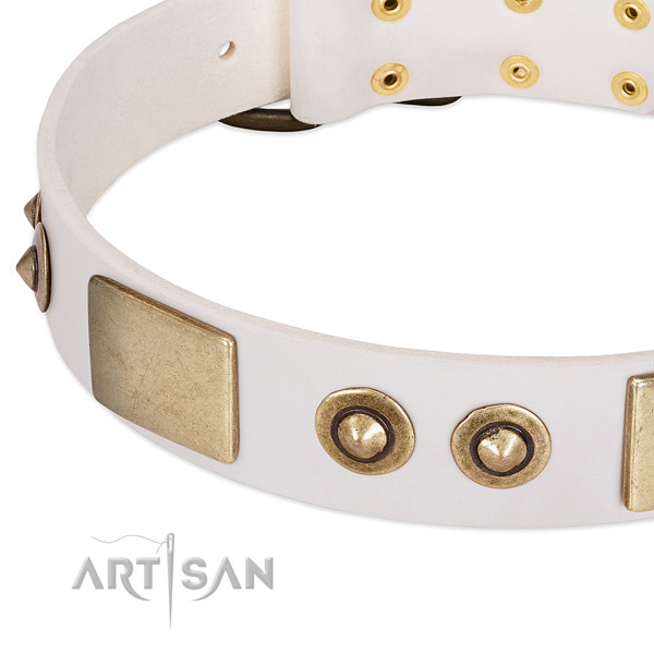 Rust resistant studs on natural genuine leather dog collar for your doggie