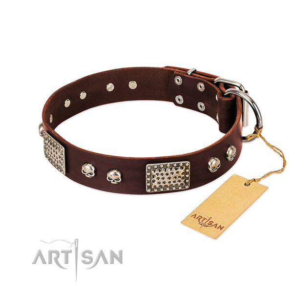 Easy wearing leather dog collar for basic training your dog