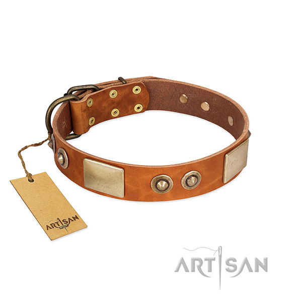 Easy adjustable natural genuine leather dog collar for walking your dog