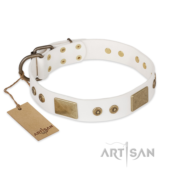 Stylish full grain natural leather dog collar for comfy wearing