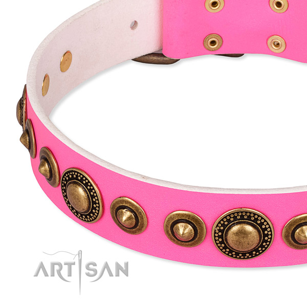 Top notch full grain natural leather dog collar handmade for your lovely dog