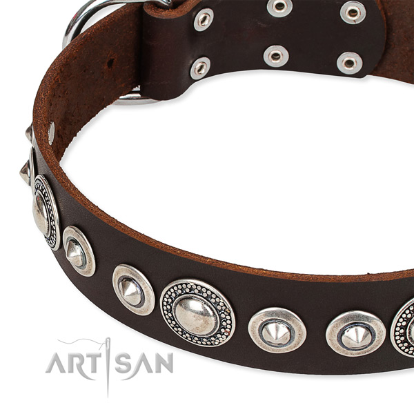 Daily use decorated dog collar of top notch full grain leather