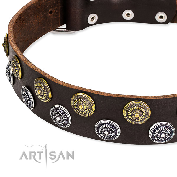 Daily use decorated dog collar of durable full grain leather