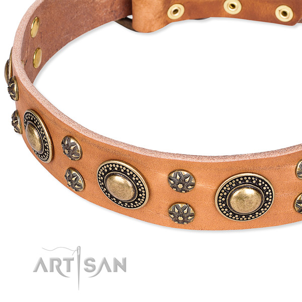 Comfy wearing embellished dog collar of high quality full grain natural leather