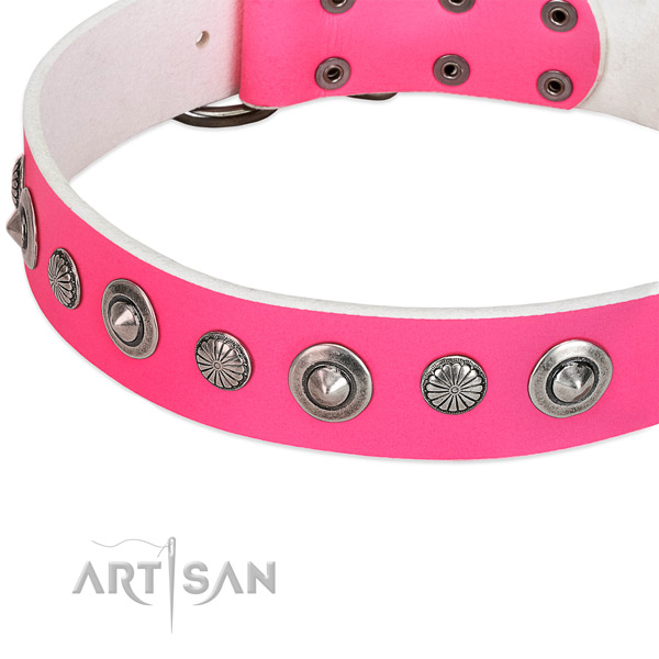 Natural leather collar with reliable fittings for your stylish canine
