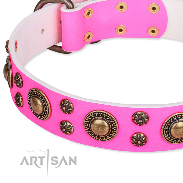 Everyday walking adorned dog collar of reliable leather
