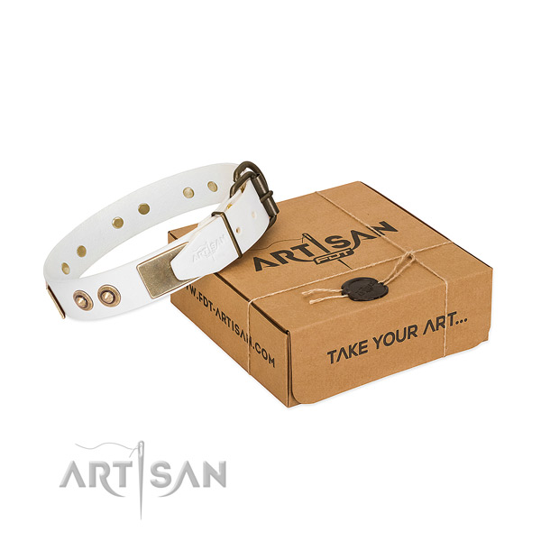 Reliable traditional buckle on natural genuine leather dog collar for your canine