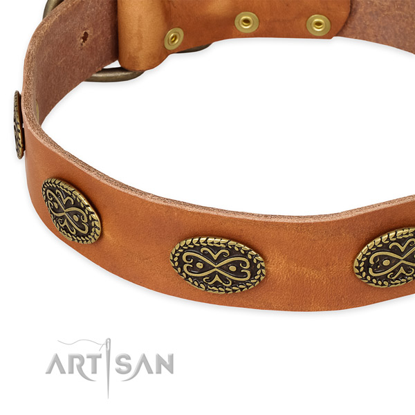 Designer full grain natural leather collar for your impressive dog