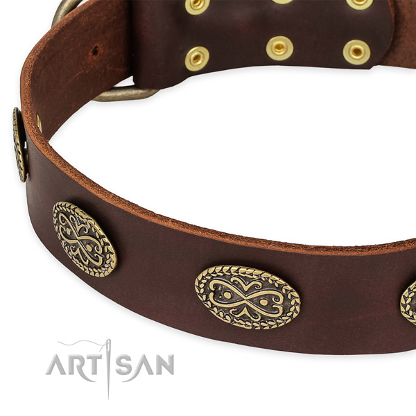Stylish full grain leather collar for your attractive dog