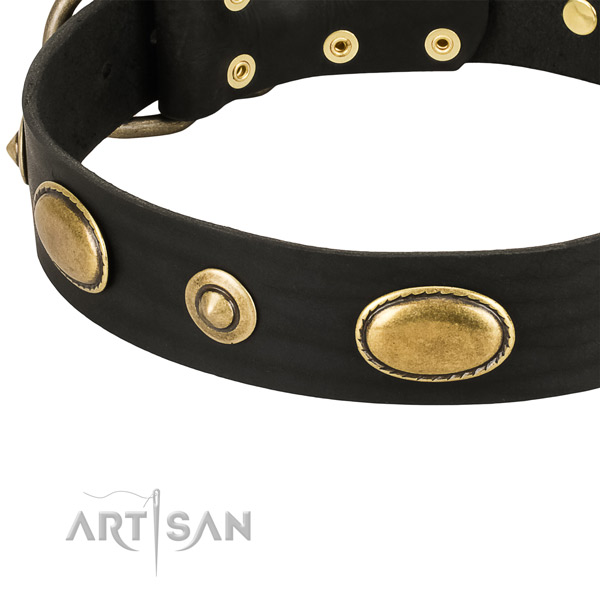 Corrosion proof adornments on full grain natural leather dog collar for your four-legged friend