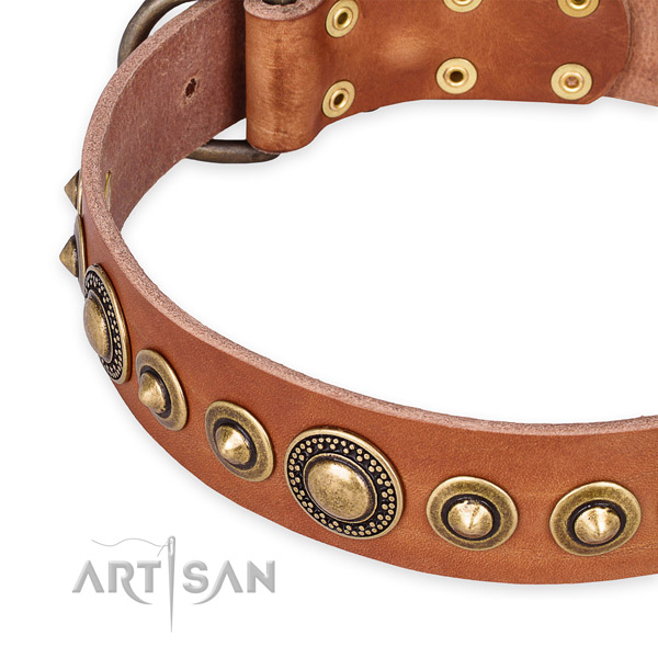 Strong full grain leather dog collar created for your handsome pet