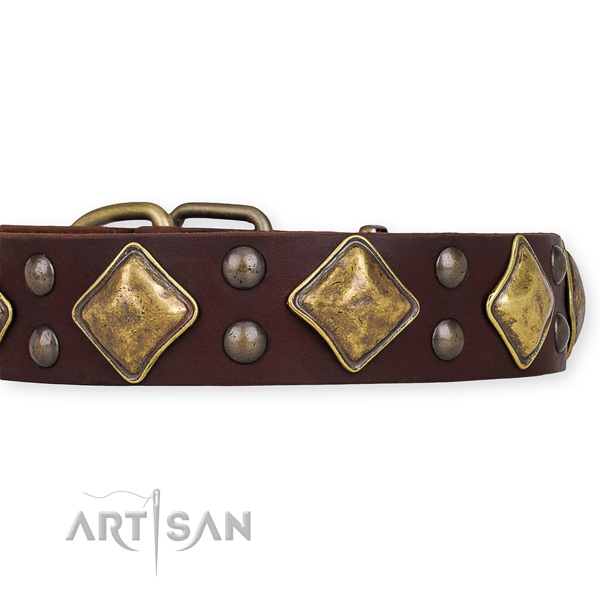 Natural leather dog collar with fashionable corrosion proof adornments