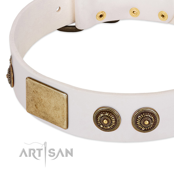 Exceptional dog collar handcrafted for your handsome dog