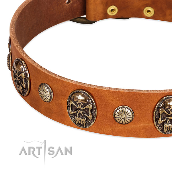 Reliable hardware on genuine leather dog collar for your pet