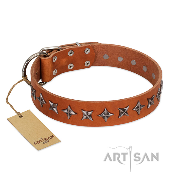 Everyday use dog collar of top quality full grain genuine leather with studs