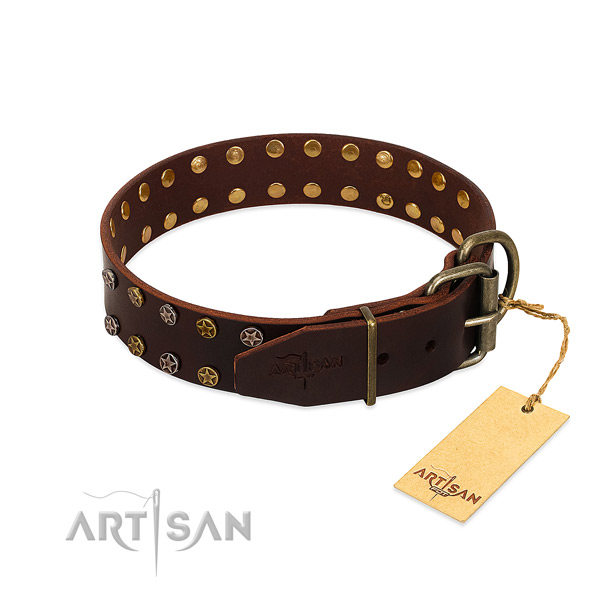 Fancy walking full grain genuine leather dog collar with significant embellishments