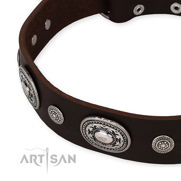 Top rate full grain natural leather dog collar created for your handsome dog