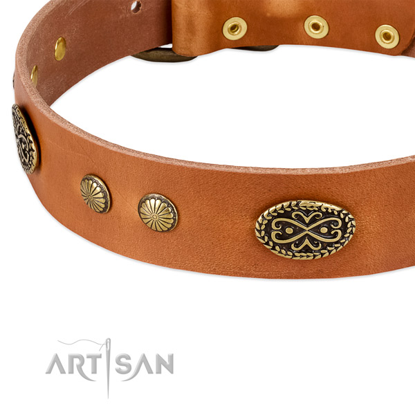 Rust resistant buckle on full grain natural leather dog collar for your canine