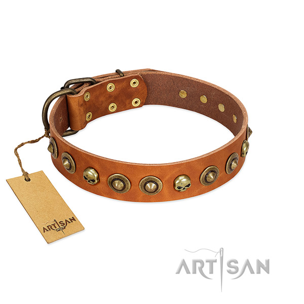Natural leather collar with trendy embellishments for your four-legged friend