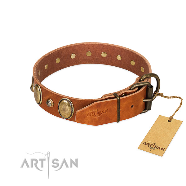 Daily walking full grain genuine leather dog collar