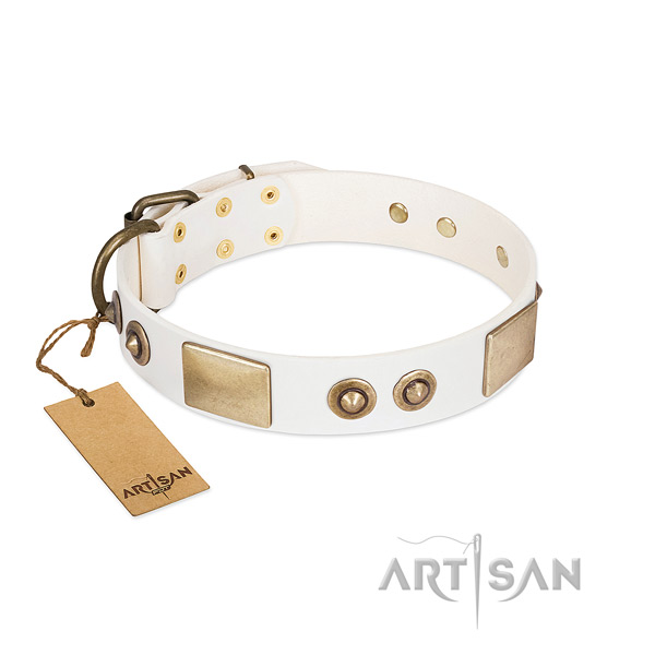 Corrosion proof decorations on full grain natural leather dog collar for your four-legged friend